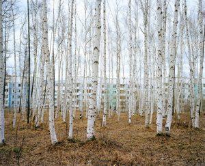 Group Exhibition New Landscape, Yeltsin Centre, Yekaterinburg